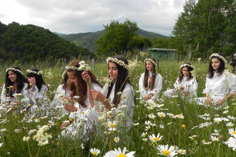 Родопите, Фестивал на дивите цветя, Agrozona.bg