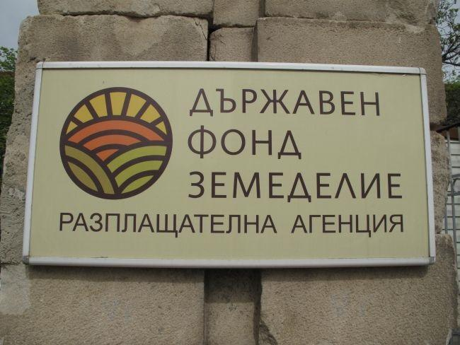 ДФЗ, Калоян Костадинов, Agrozona.bg