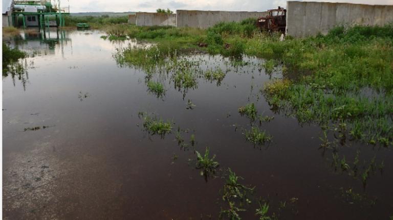 завод, наводнение, Agrozona.bg