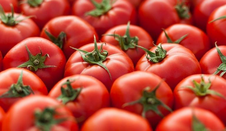 домати, Европейки съюз, Agrozona.bg