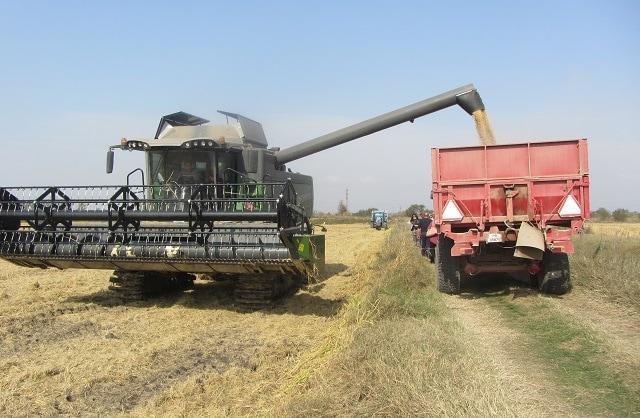 зърно, реколта, Agrozona.bg