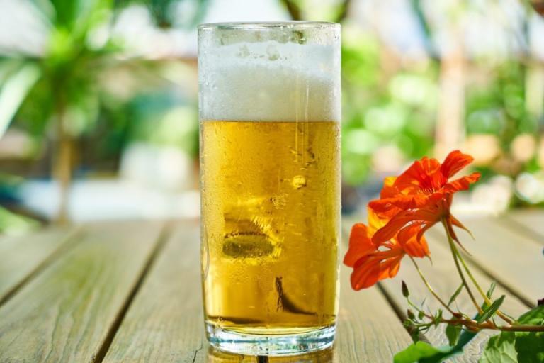 консумация на бира, Agrozona.bg