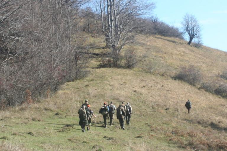 АЧС, лов на дива свиня, Agrozona.bg