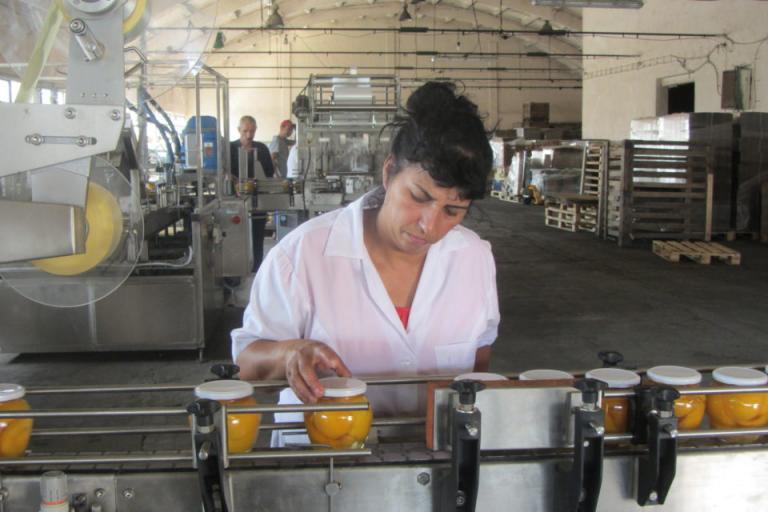 плодове и зеленчуци, преработвателна промишленост, Agrozona.bg