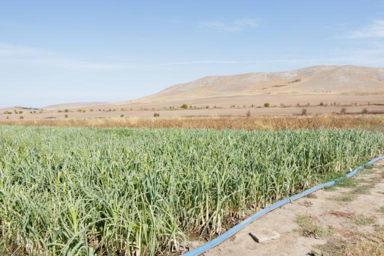 вода, земеделски земи, Agrozona.bg