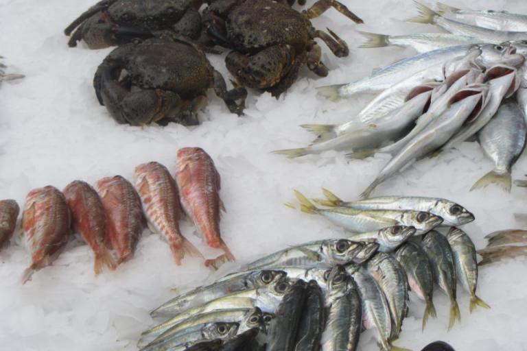 риба, трапеза, Agrozona.bg