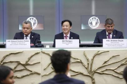 ФАО обяви 2020 г. за Международна година на здравето на растенията
