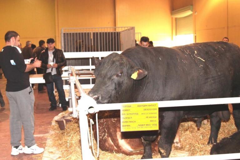Агра 2020, бик, Agrozona.bg
