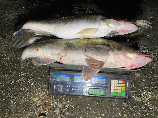 глоби, Закон за рибарството и аквакултурите, Agrozona.bg