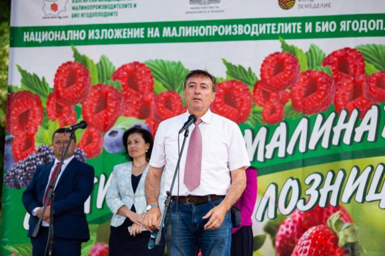 малинопроизводители, прибиране, Agrozona.bg