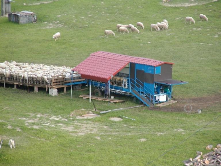 ДФЗ, животни, Agrozona.bg