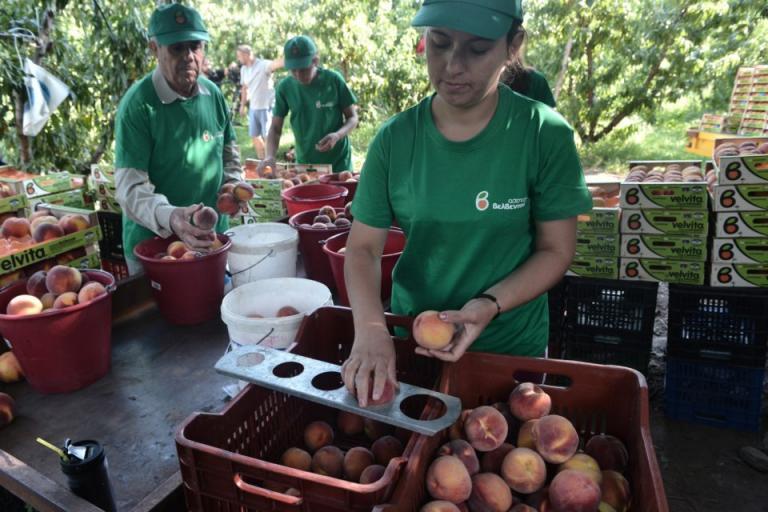 ЕК, земеделие, Agrozona.bg