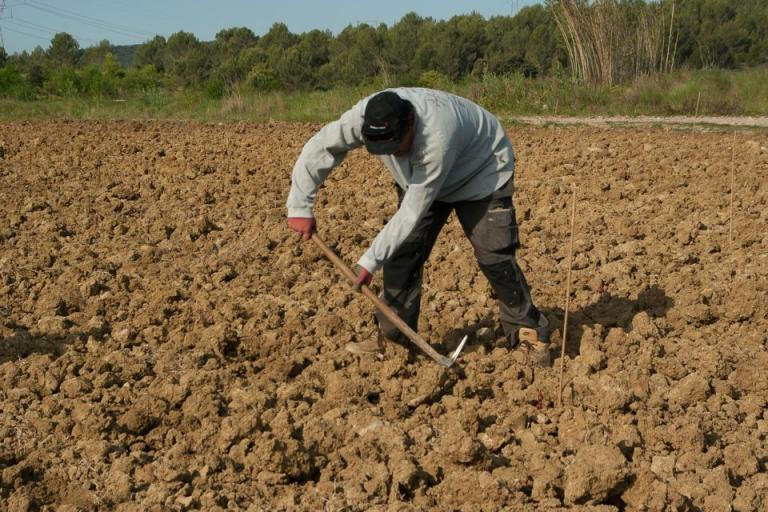 диверсификация на културите, Agrozona.bg