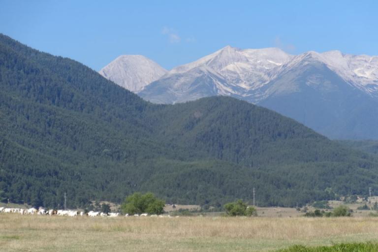 земеделие, планински продукт, Agrozona.bg