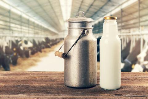 Съвет по месо и мляко, Agrozona.bg