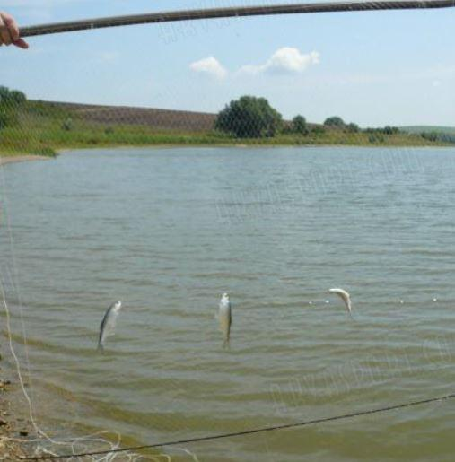 забранени риболовни уреди, ИАРА, Agrozona.bg