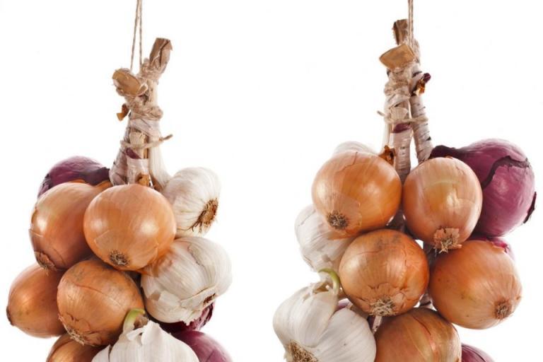 съхранение на лук и чесън, Agrozona.bg