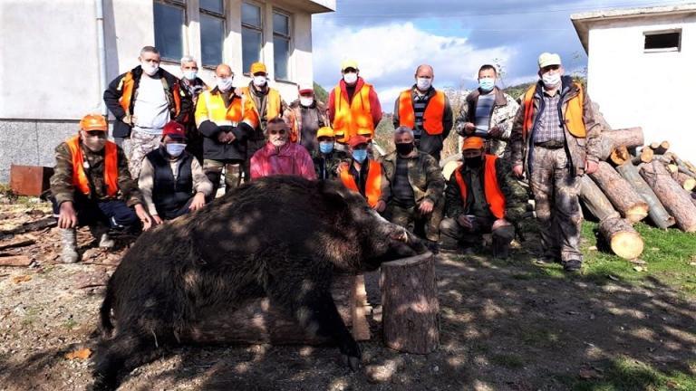 310 кг, Ардино, Agrozona.bg