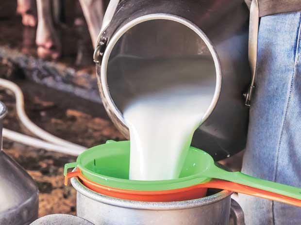 биволско, мляко, Agrozona.bg
