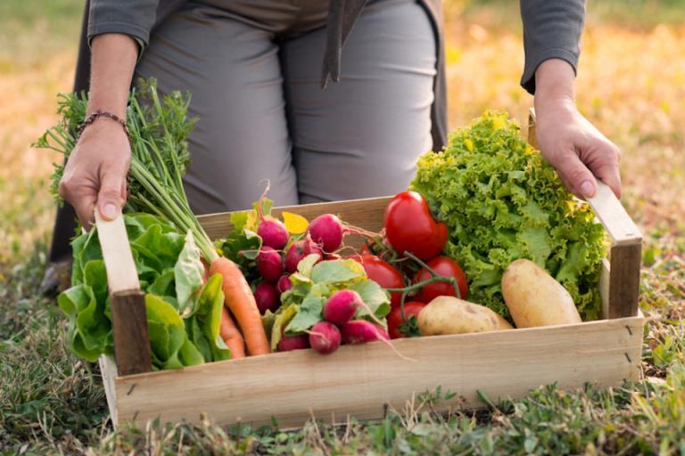 земеделие, Органично, Agrozona.bg