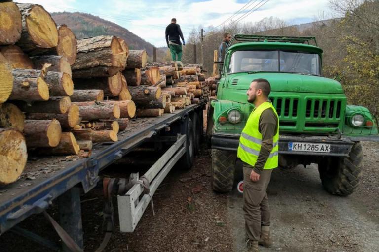 дървесина, фото- регистър, Agrozona.bg