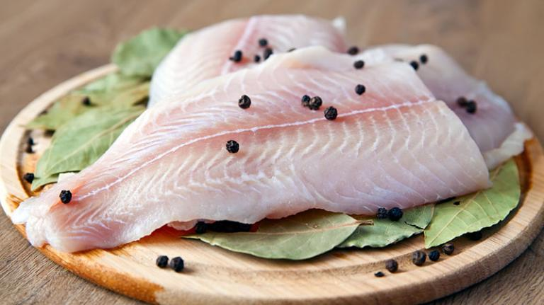 изкуствена риба, Agrozona.bg