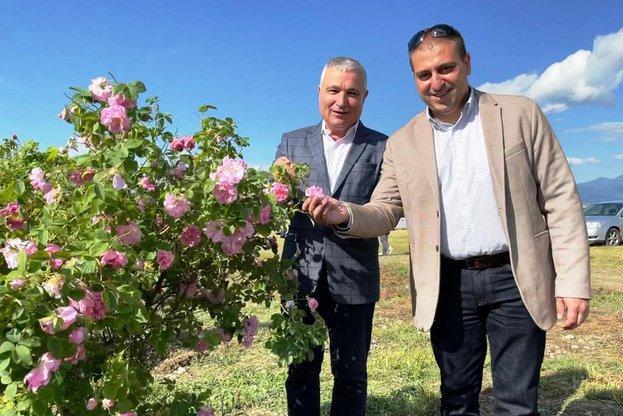 Долина на розите, Agrozona.bg