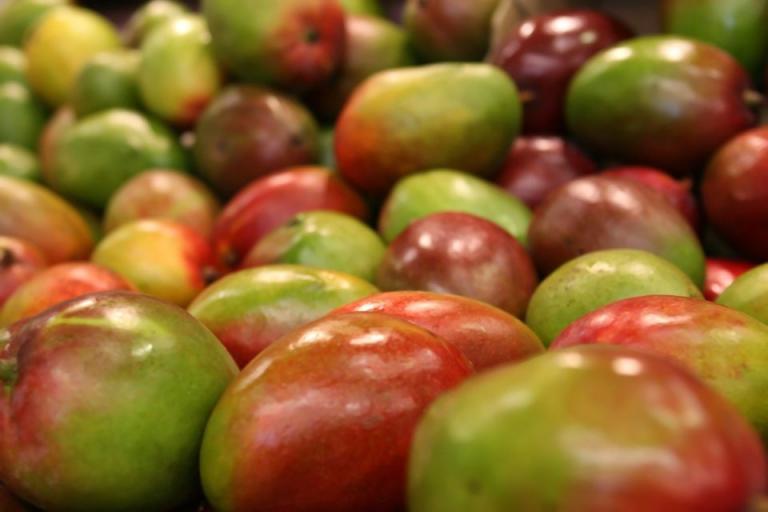 здраве, манго, Agrozona.bg