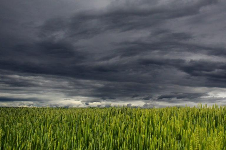 времето, градушки, Agrozona.bg