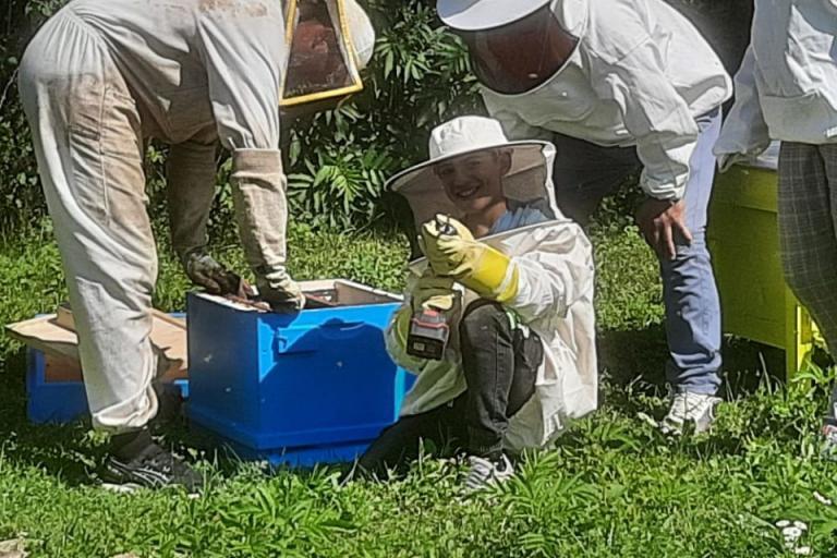 пчели, ромски семейства, Agrozona.bg