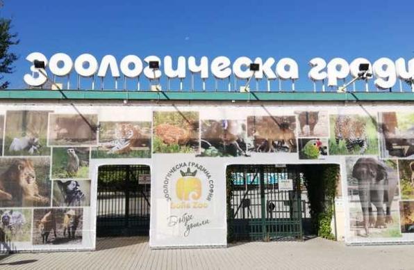 зоопарк, коронавирус, Agrozona.bg